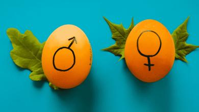 الفطرة والمثلية الجنسية